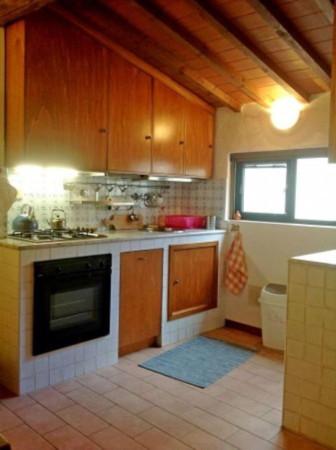 Affitto bilocale Firenze Via Dell'orto, 40 metri quadri