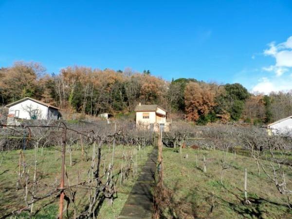 Bilocale Pedara Via Montarello 2