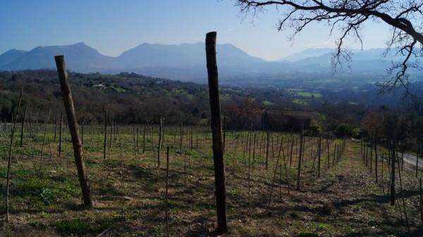 Rustico / Casale in vendita a Castel Campagnano, 6 locali, prezzo € 560.000 | Cambio Casa.it