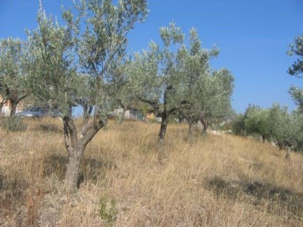 Terreno Edificabile Residenziale in vendita a Teramo, 9999 locali, prezzo € 16.500 | Cambio Casa.it