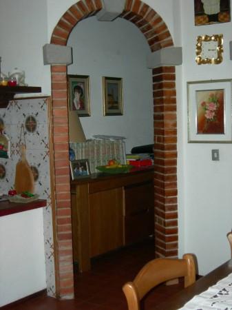 Villa in Vendita a Fauglia Periferia: 5 locali, 500 mq