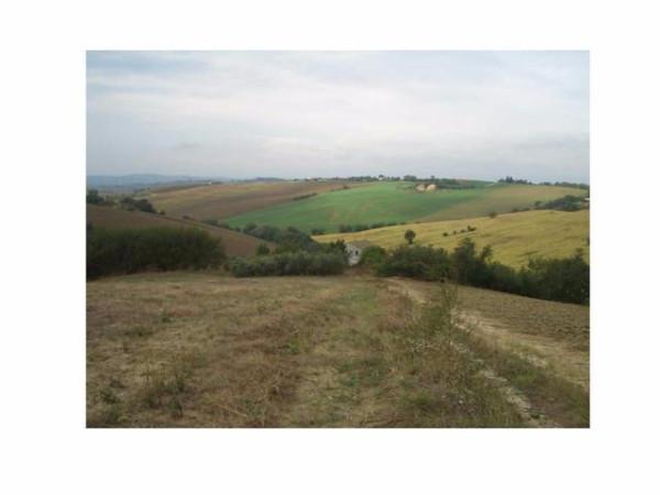 Terreno Agricolo in vendita a Montelupone, 9999 locali, prezzo € 130.000 | Cambio Casa.it