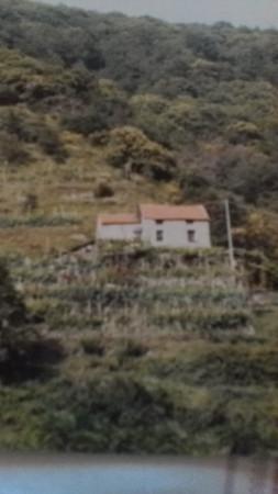 Rustico / Casale in Vendita a Albisola Superiore