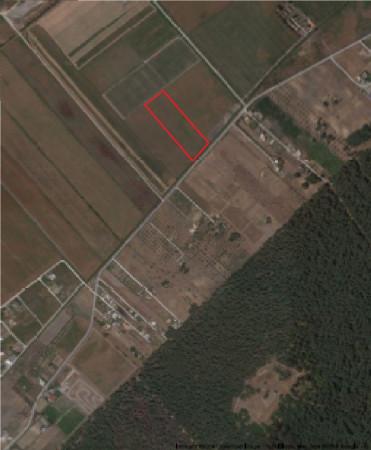 Terreno Agricolo in vendita a Ginosa, 9999 locali, prezzo € 45.000 | Cambio Casa.it