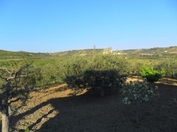 Terreno Agricolo in vendita a Ribera, 9999 locali, Trattative riservate | CambioCasa.it