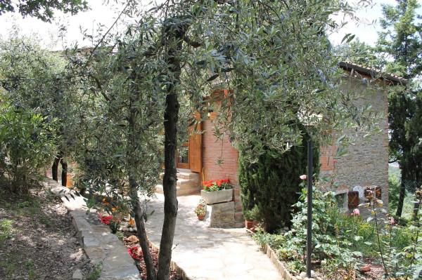 Appartamento in Affitto a Arezzo Periferia Nord: 3 locali, 60 mq