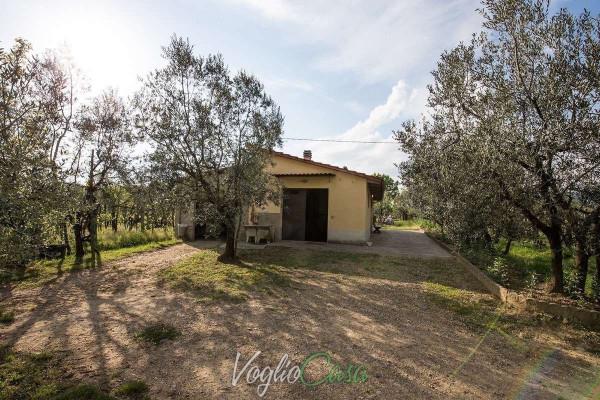 Terreno agricolo in Vendita a Terranuova Bracciolini Rif.3142923