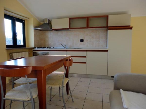 Appartamento in affitto a Alba, 1 locali, prezzo € 330 | Cambio Casa.it
