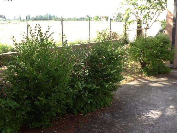 Bilocale Ravenna Via Ezio Vanoni 6