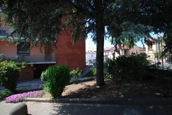 Bilocale Pavia Viale Cremona 5