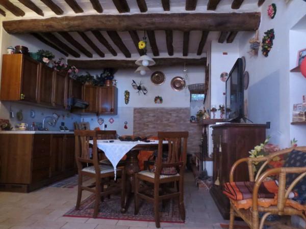 Bilocale San Giuliano Terme Via I. Possenti Asciano 2