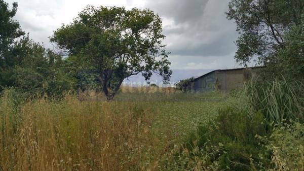 Terreno Agricolo in vendita a Tarquinia, 9999 locali, prezzo € 100.000 | Cambio Casa.it