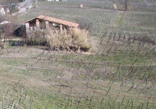Rustico / Casale in vendita a Montecalvo Versiggia, 9999 locali, prezzo € 75.000 | Cambio Casa.it