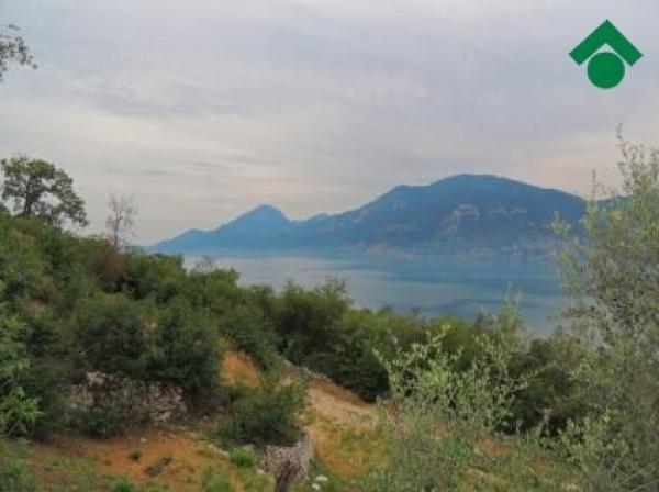 Terreno Agricolo in vendita a Brenzone, 9999 locali, prezzo € 55.000 | CambioCasa.it