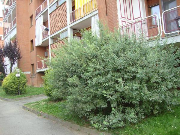 Bilocale Santena Via Trinità 1