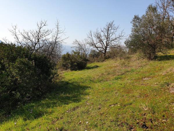 Bilocale Ceccano Via Madonna Del Carmine 4
