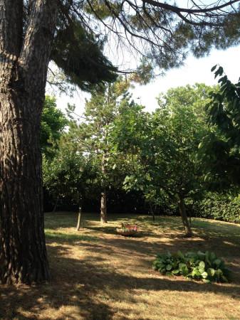 Bilocale Montemarciano  12
