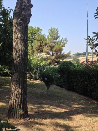 Bilocale Montemarciano  2