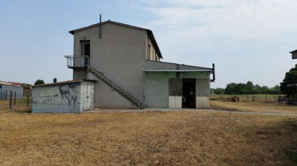 Laboratorio in vendita a Cerea, 4 locali, prezzo € 160.000 | CambioCasa.it