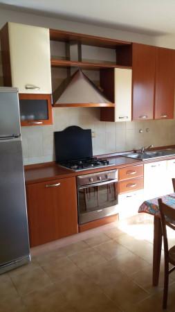 Appartamento  in Affitto a Agugliaro