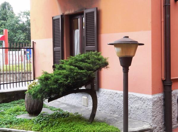 Bilocale Varese Via Dalmazia 10