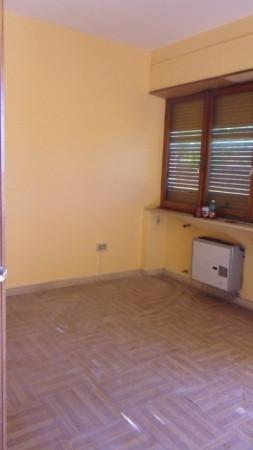 Ufficio / Studio in affitto a Avezzano, 2 locali, prezzo € 350 | Cambio Casa.it
