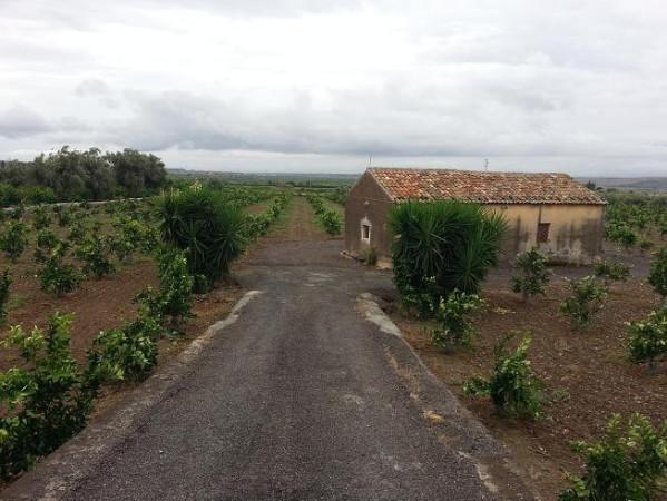 Terreno Agricolo in vendita a Paternò, 9999 locali, prezzo € 149.000 | Cambio Casa.it