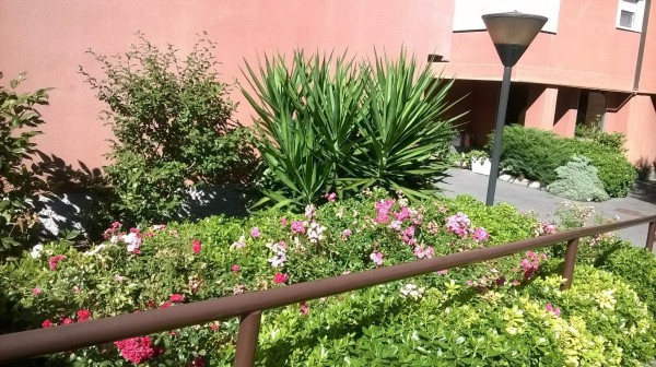 Bilocale Milano Via Vittorio Scialoia 9