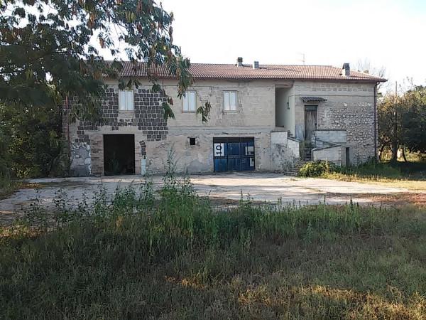 Attività / Licenza in vendita a Pietravairano, 6 locali, prezzo € 380.000 | Cambio Casa.it