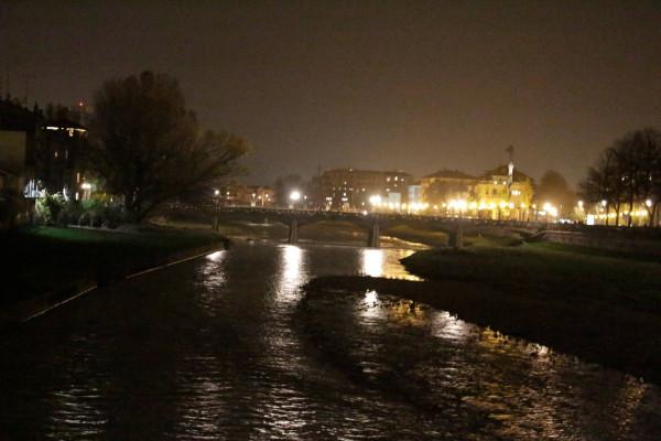 Bilocale Parma  5