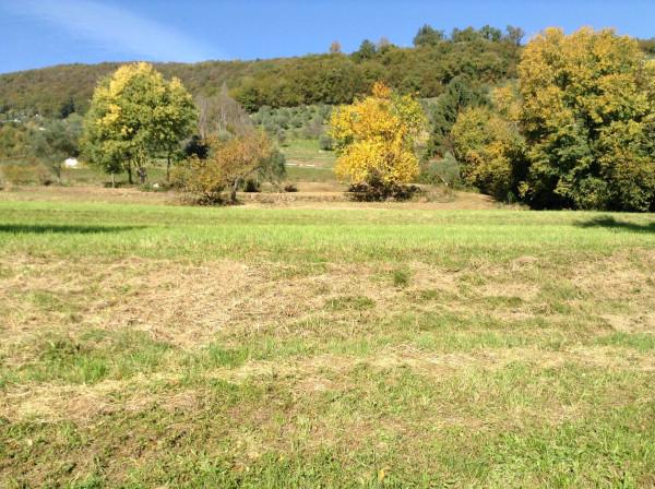 Terreno Agricolo in vendita a Bassano del Grappa, 9999 locali, Trattative riservate | Cambio Casa.it