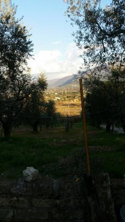 terreno Vendita Palombara Sabina