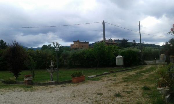 Bilocale Colonna  9