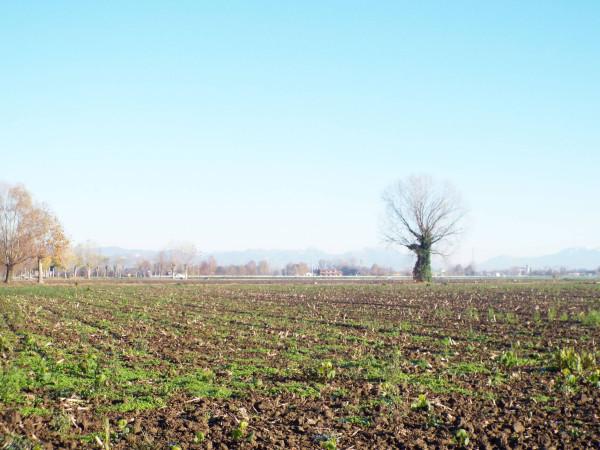 Terreno Agricolo in vendita a Ghedi, 9999 locali, prezzo € 55.000 | Cambio Casa.it