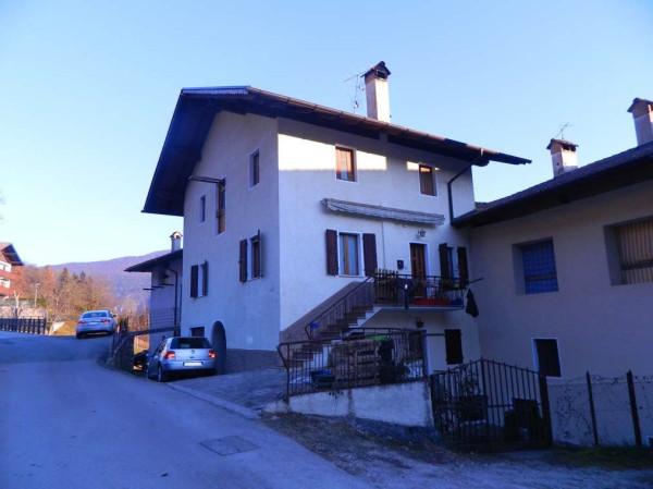 Casa indipendente in Vendita a Stenico Periferia: 5 locali, 300 mq