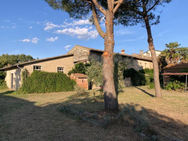 Rustico in Vendita a Castiglione Del Lago:  5 locali, 300 mq  - Foto 1
