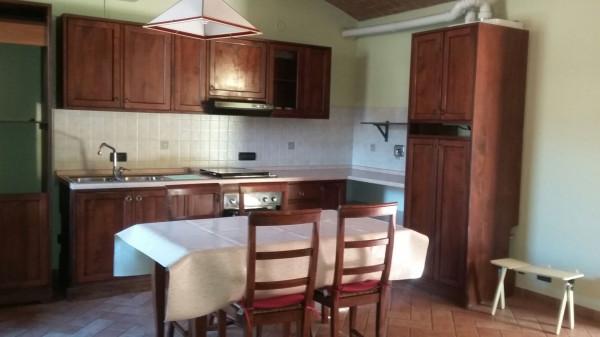 Appartamento in Affitto a Correggio Semicentro: 1 locali, 65 mq
