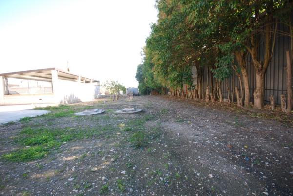 Bilocale Foggia Strada Del Salice Nuovo 6