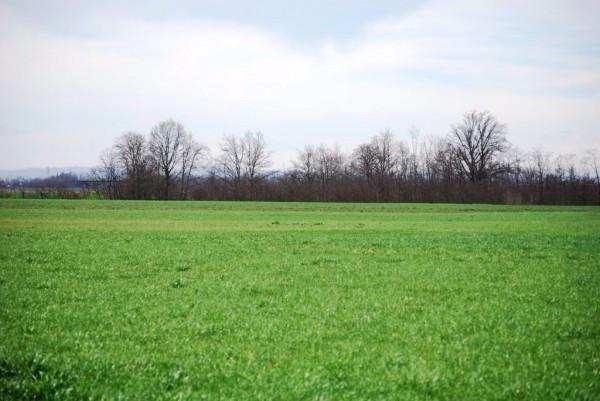 Terreno Agricolo in vendita a Missaglia, 9999 locali, prezzo € 90.000 | Cambio Casa.it