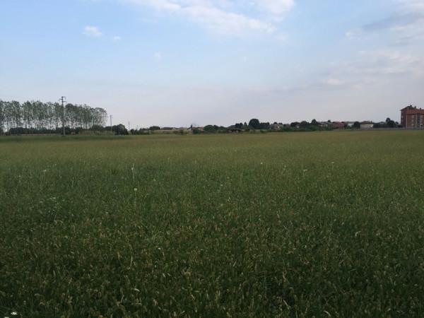 Terreno commerciale in Vendita a Favria Periferia: 6200 mq