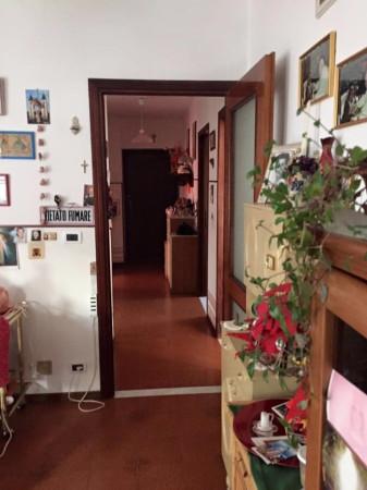 Immagine  924 Appartamento