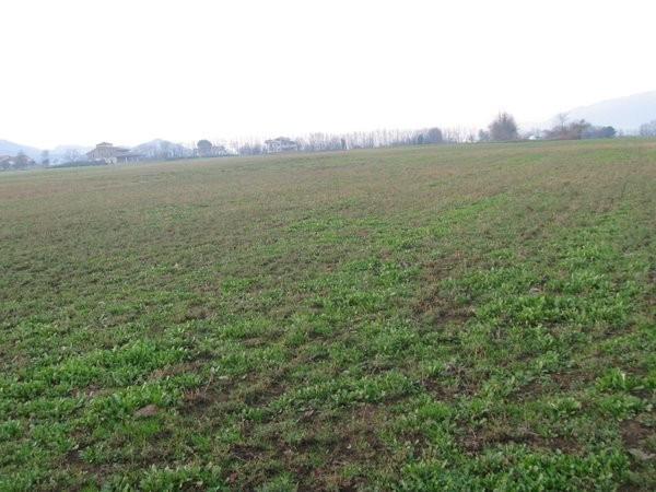 Terreno Agricolo in vendita a Alvignano, 9999 locali, prezzo € 90.000 | Cambio Casa.it
