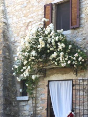 Bilocale Semproniano Via Del Castello 2