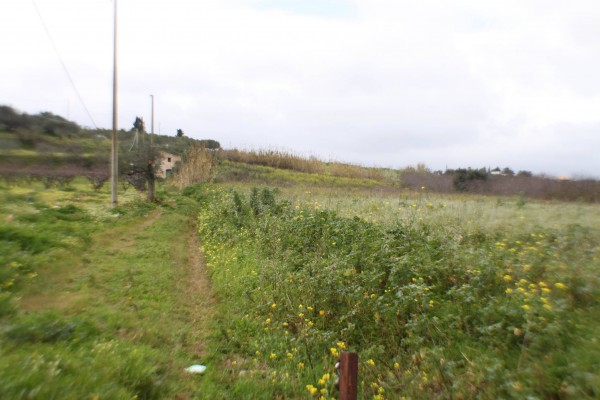 Terreno Agricolo in vendita a Partinico, 9999 locali, prezzo € 55.000 | Cambio Casa.it
