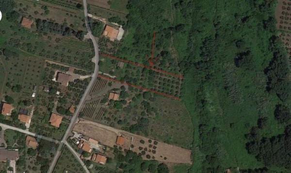 Terreno Agricolo in vendita a Velletri, 9999 locali, prezzo € 45.000 | Cambio Casa.it