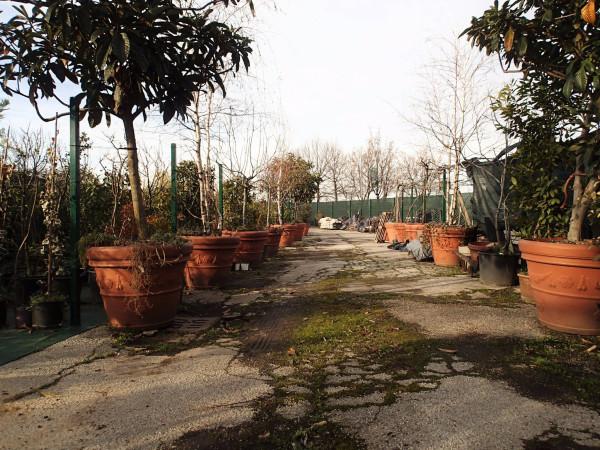 Terreno Agricolo in vendita a Cinisello Balsamo, 9999 locali, prezzo € 100.000 | Cambio Casa.it