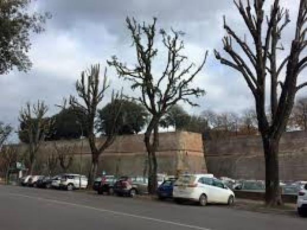 Loft, vittorio veneto, Vendita - Siena