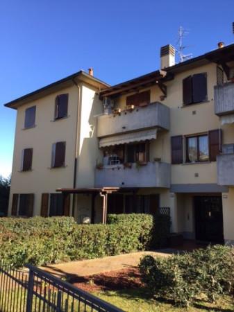 Bilocale Reggio nell Emilia Sesso 7