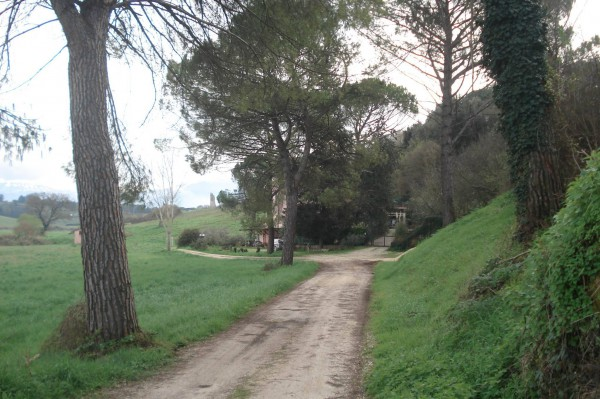 Rustico-casale Affitto Palombara Sabina