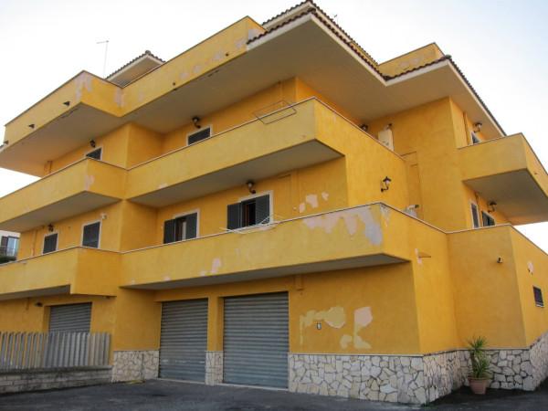 Bilocale Mentana Via Trieste 8